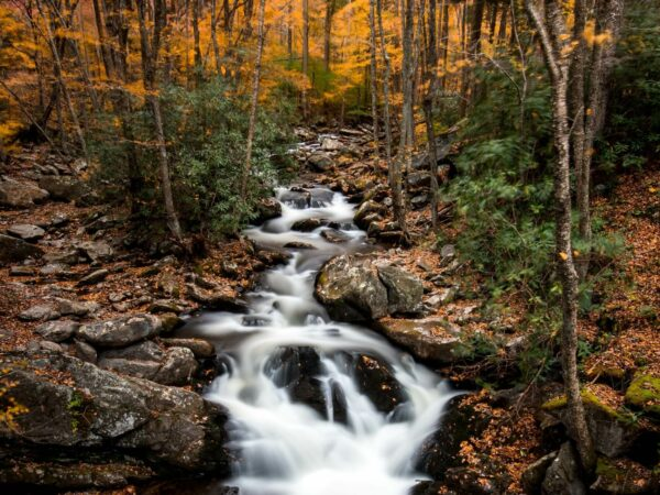 spirit-on-the-stream-guided-meditation-music